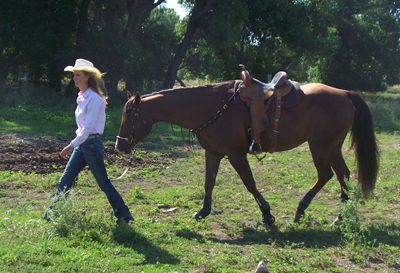 On A Barrel Racing Mission